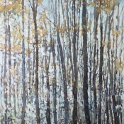 40x60 The lit forest*
