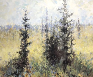 Conifer Field, landscape painting