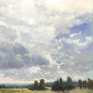 field, cloud, firs,