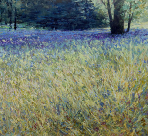 landscape, grass