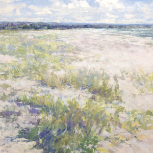 beach, Georgian bay, sand, dunes